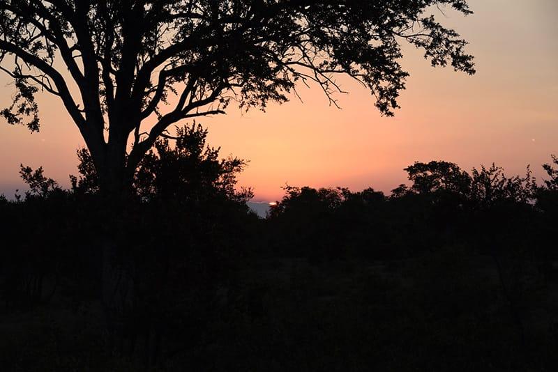 viajes-africa-opniones-de-nuestros-clientes-06