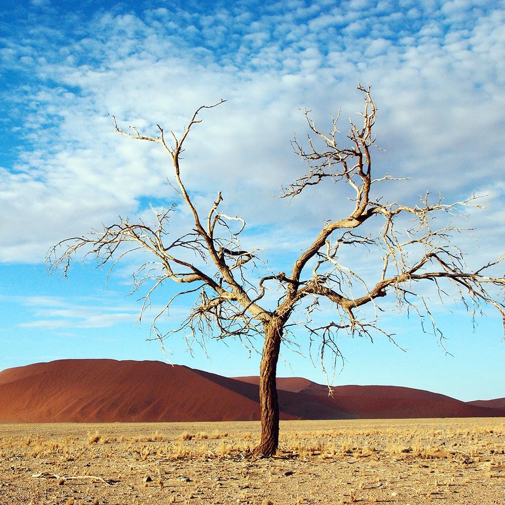 1-viajes africa namibia a tu meddia
