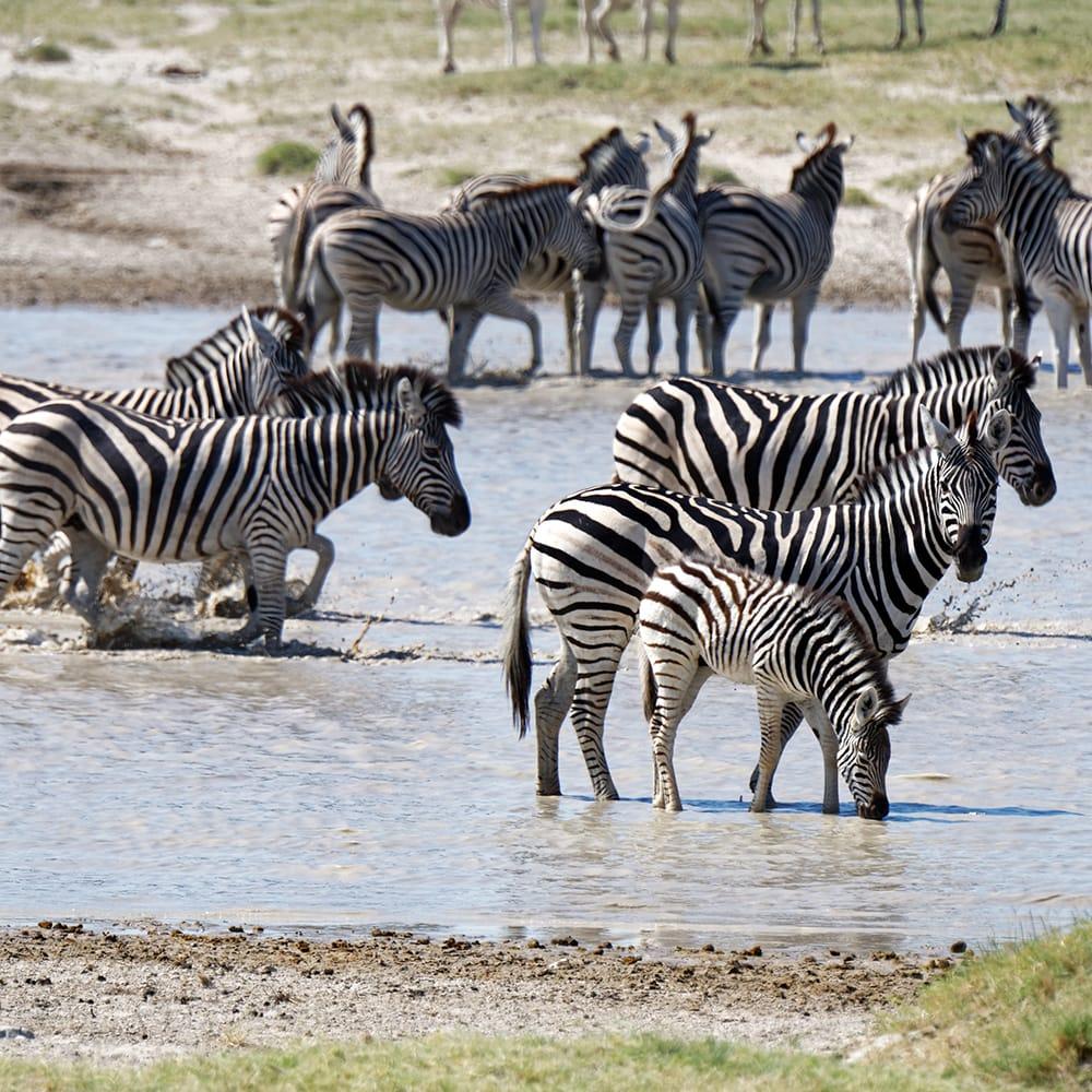 13-viajes africa luna de miel tanzania