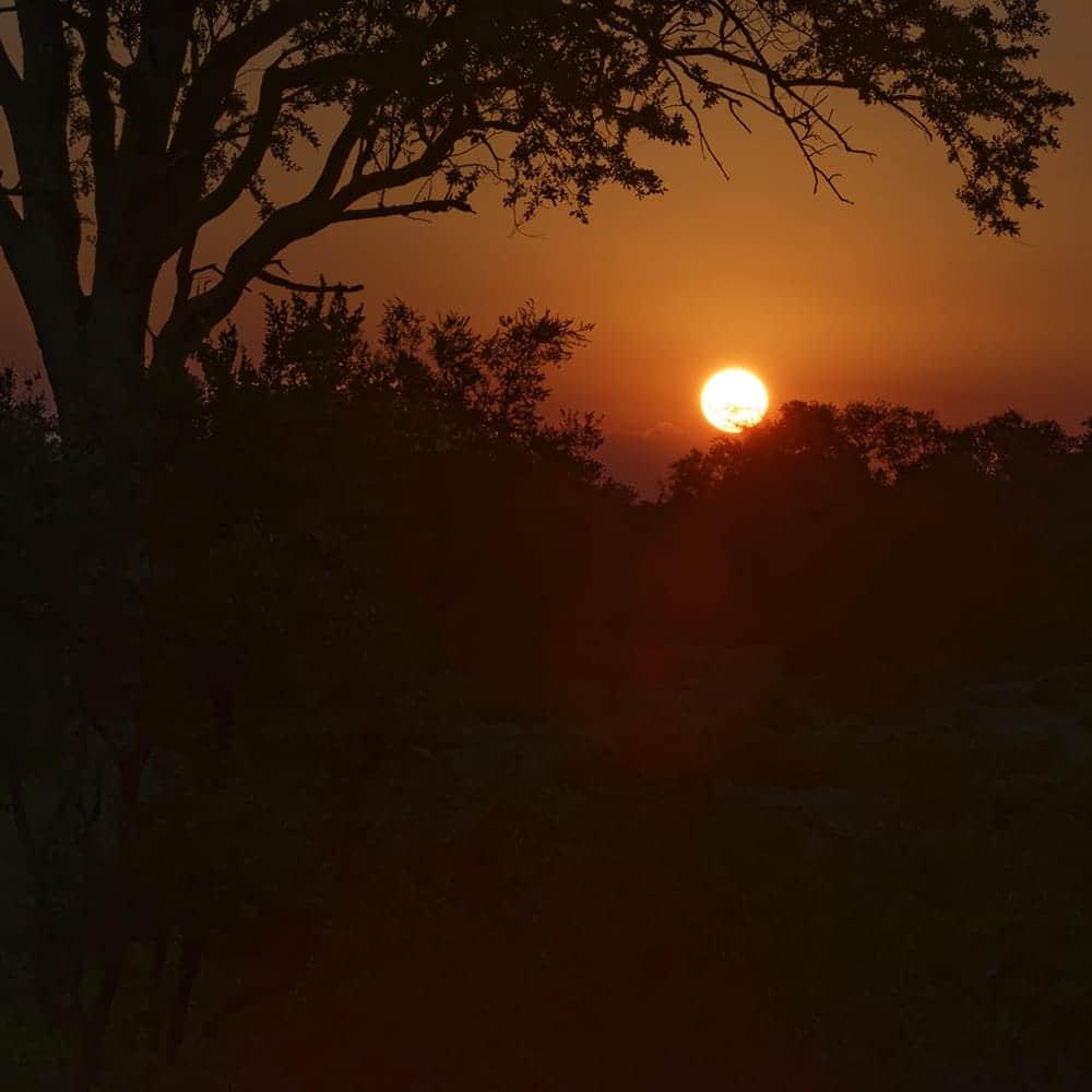 6-viajes africa safari a medida botswana