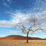 Viajes-africa-alojamiento-de-lujo-desierto-namib